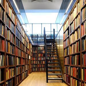 Библиотеки Белоомута